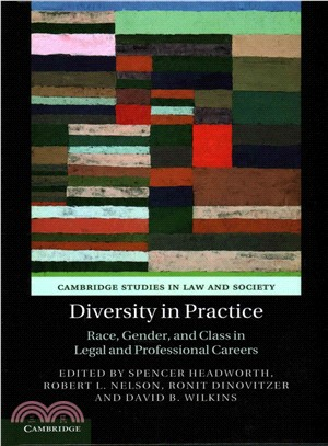 Diversity in Practice ― Race, Gender, and Class in Legal and Professional Careers