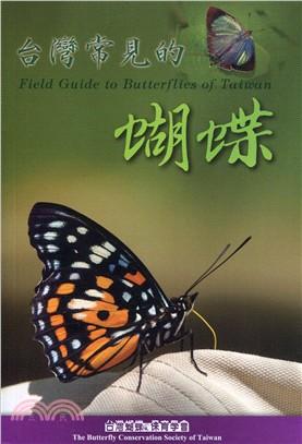 台灣常見的蝴蝶