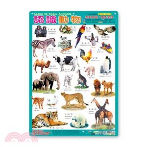 幼兒學習掛圖:認識動物